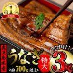 【ふるさと納税】東串良町からうなぎの蒲焼がやって来た!