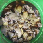 マイヤー電子レンジ圧力鍋でレバーの生姜煮